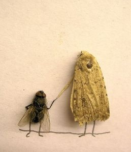 dead_flies_art_13